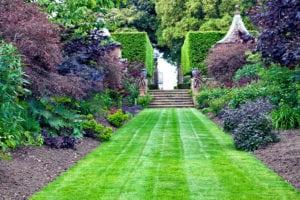 landscaped-path