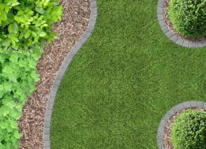 Ask the Experts: Landscaping